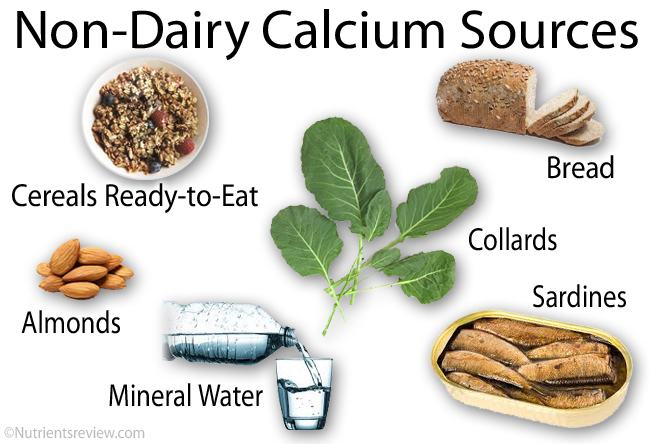 List Of Non Dairy Foods That Contain Calcium