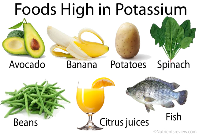 Foods high in potassium image