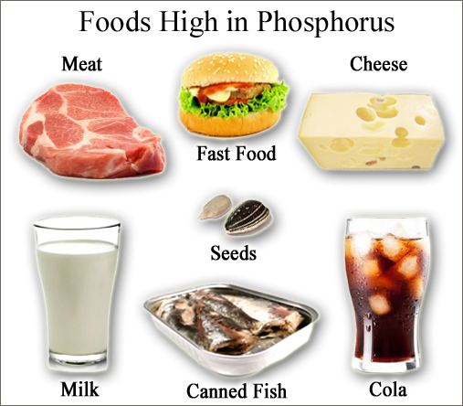 Phosphorus Foods Picture