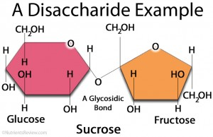 A disaccharide picture