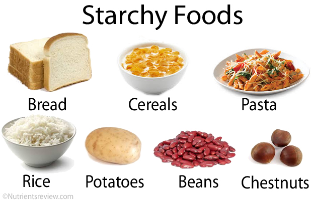 Starches In Dog Food