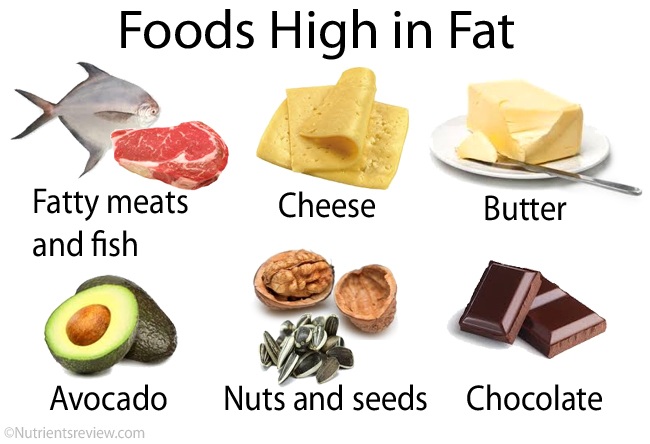 Foods high in fat image