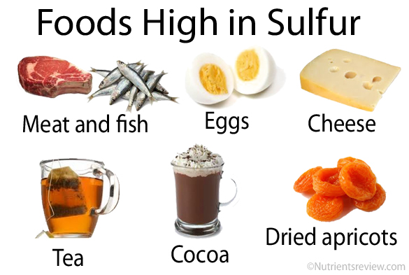 Sulfur And Sulfite Rich Foods, Sulfur Burps