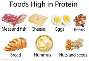 Foods high in protein image