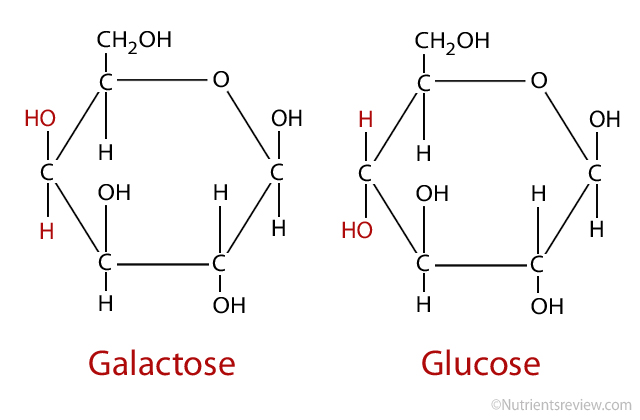 Galactose Formula | www.pixshark.com - Images Galleries ...