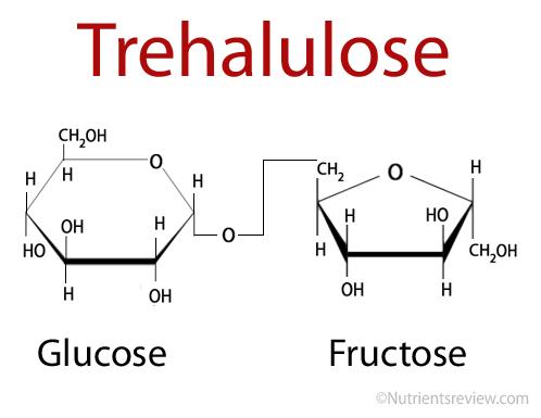Trehalulose structure
